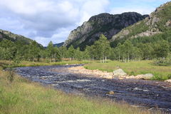 Río escénico en Noruega Imagen de archivo