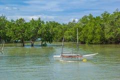 Río filipino en el bosque foto de archivo