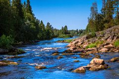 Río frío de la montaña Fotografía de archivo