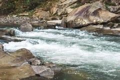 Río frío de la montaña ucrania Fotografía de archivo