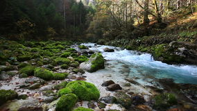 Río frío fresco de la montaña con el sonido de la naturaleza metrajes