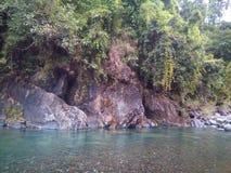 río hermoso de restauración de la opinión de la naturaleza Foto de archivo