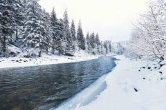 Río hermoso del invierno en un barranco en un alza del invierno Imagen de archivo libre de regalías