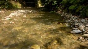 Río hermoso y natural de Kawatuna metrajes