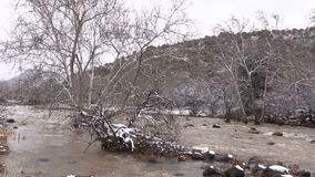 Río inundado almacen de metraje de vídeo