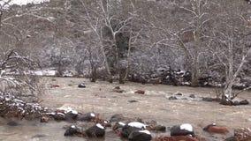 Río inundado en invierno almacen de video