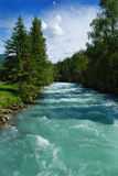 Río Kucherla de la montaña Imagen de archivo