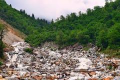 Río Lakshman Ganga en viaje a Ghangaria, Uttarakhand, la India Fotos de archivo libres de regalías