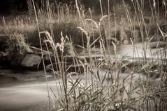 Río largo de yampa de la exposición de la sepia Fotografía de archivo