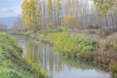 Río lento en prado Foto de archivo libre de regalías