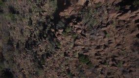 río magnífico nacional de parque-Río de la curva grande almacen de metraje de vídeo