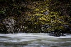 Río medio de Snoqualmie de la bifurcación Foto de archivo libre de regalías
