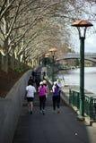 Río Melbourne Victoria Australia de Yarra Imagen de archivo