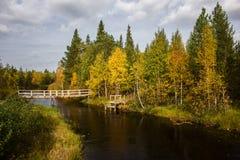 Río Mininka al día ventoso del otoño Fotos de archivo libres de regalías