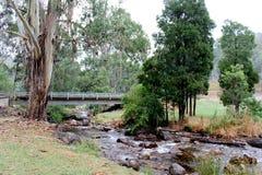 Río Mt Bulla Victoria Australia 2 de Delatite imagen de archivo