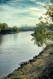 Río Neckar en Mannheim con el árbol al aire libre de la mañana de la playa del cielo de la belleza de la naturaleza imagen de archivo libre de regalías