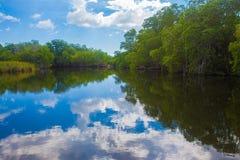 Río negro Fotografía de archivo libre de regalías
