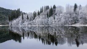 Río Nidelva, Noruega Foto de archivo