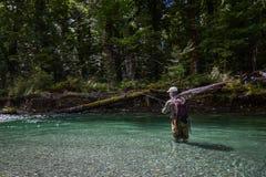 Río Nueva Zelanda de Caples Fotografía de archivo libre de regalías