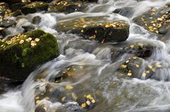 Río otoñal Imágenes de archivo libres de regalías