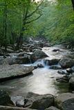 Río pacífico Imagenes de archivo
