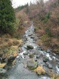 Río pacífico en Japón fotos de archivo