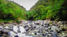 río pedregoso en el medio de la selva fotos de archivo libres de regalías
