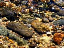 Río Pepples Fotos de archivo libres de regalías