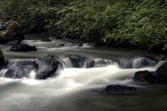 Río perezoso Fotografía de archivo libre de regalías