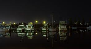 Río Perth del cisne Foto de archivo