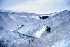 Río potente que lleva a la cascada de Svartifoss en Skaftafell Fotografía de archivo