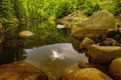 Río presagiado en las montañas de Harz Foto de archivo