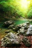 Río profundamente en bosque de la montaña Imagen de archivo