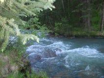 río que acomete en Colorado Imágenes de archivo libres de regalías