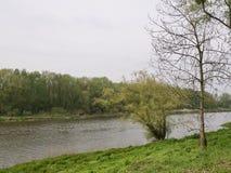 Río que atraviesa el campo de la primavera Imágenes de archivo libres de regalías