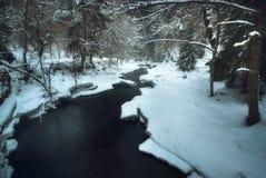 Río que atraviesa un bosque en invierno fotografía de archivo libre de regalías