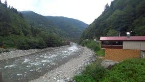 Río que corre con el paisaje verde de Rize en la región del Mar Negro, Turquía de Firtina
