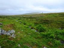 Río que corre con paisaje del paseo de la naturaleza de Laponia Fotografía de archivo libre de regalías