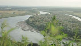 Río que desaparece en la distancia almacen de metraje de vídeo
