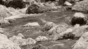 Río que fluye almacen de video