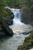 Río que fluye Imagen de archivo libre de regalías