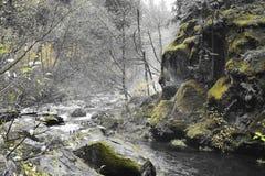Río que fluye Fotografía de archivo libre de regalías