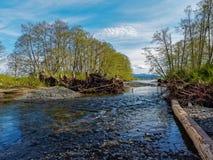 Río que fluye al sonido fotografía de archivo libre de regalías