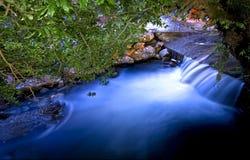 Río que fluye bajo árboles Foto de archivo libre de regalías