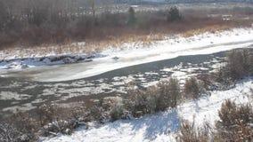 Río que fluye en Aspen Colorado almacen de metraje de vídeo