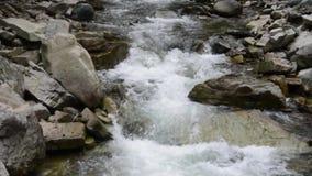 Río que fluye en la montaña almacen de video