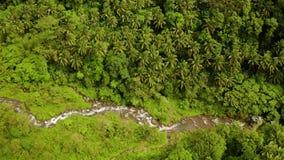 Río que fluye en la selva de la montaña, Filipinas, Camiguin almacen de video