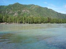 Río que fluye en los bancos herbosos almacen de metraje de vídeo