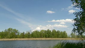 Río que fluye en Sunny Day almacen de video