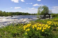 Río que fluye rio abajo Fotografía de archivo